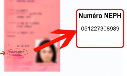 Numéro permis ancien permis