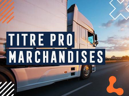 Titre Pro transport de marchandises sur porteur